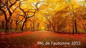 Central-Park-New-York-Automne-blog-voyage-trace-ta-route
